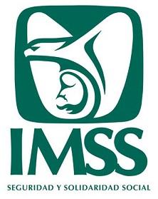 IMSS13